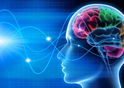 تاثیرات خواب بر روی مغز